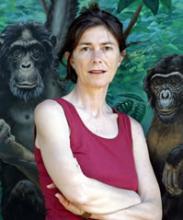 Elisabetta Visalberghi's picture